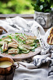 Grilled halloumi cheese salad Royalty Free Stock Photos