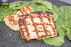 Grilled halloumi Royalty Free Stock Photos
