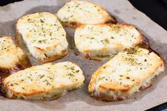 Grilled haloumi cheese on a baking tray. Grilled haloumi cheese with herbs on a baking tray Stock Images