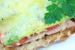 Grilled Ham Cheese Tomato and Avocado on Toast 4 Stock Image