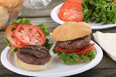 Grilled Hamburger Picnic Stock Image