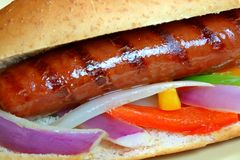 Grilled Hot Dog. Beautiful grilled hot dog with onions and peppers stock image