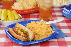 Grilled hot dog with macaroni and cheese. A grilled hot dog with macaroni and cheese on a picnic table royalty free stock photo