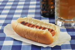 Grilled hot dog Royalty Free Stock Photography
