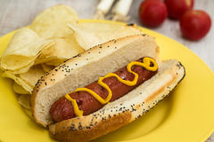 Grilled Hot Dog With Mustard Stock Photos
