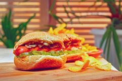 Grilled Hot dog or wiener with fried onions and marinated cucumbers. Potato chips on wooden table. Ultimate fast food. Grilled Hot dog or Wiener with fried Royalty Free Stock Photo