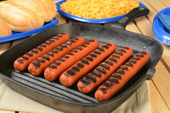 Grilled hot dogs with buns Stock Photography