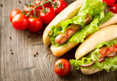 Grilled hot dogs with ketchup and mustard Royalty Free Stock Images