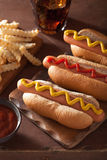 Grilled hot dogs with mustard ketchup and french fries Stock Images