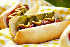 Grilled hot dogs with mustard, ketchup and relish Royalty Free Stock Images