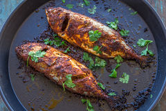 Grilled Indian Mackerel. Fish in a grill tray Royalty Free Stock Photos