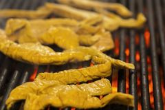 Intestine pork on the grill. Grilled intestine pork on the grill royalty free stock images