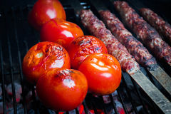 Grilled iran kebab with tomatoes Stock Photos