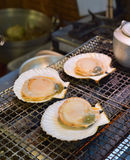 Grilled japanese scallop Royalty Free Stock Photo