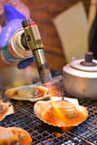 Grilled japanese scallop Stock Image