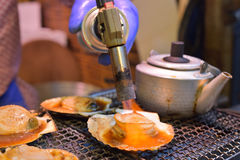 Grilled japanese scallop Stock Photography