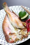 Grilled japanese tilefish royalty free stock photography