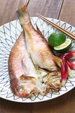 Grilled japanese tilefish royalty free stock photos