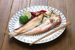 Grilled japanese tilefish stock photo