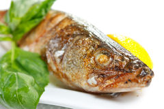 Grilled juicy pikeperch with lemon and basil Stock Photo
