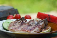 Grilled juicy pork chops. Fresh fried pork chops with vegetables and slice of water melon. Close up image, green grass in background royalty free stock photos
