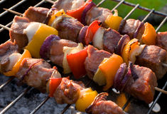 Grilled kabobs Royalty Free Stock Photo