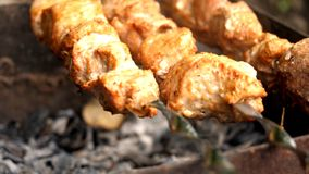 Grilled kebab close-up. royalty free stock image