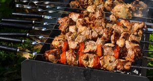 Grilled kebab cooking on metal skewer closeup. Roasted meat cooked at barbecue. Traditional eastern dish, shish kebab. Grill on ch. Arcoal and flame, picnic Stock Photos