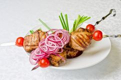 Grilled kebab meat Royalty Free Stock Images