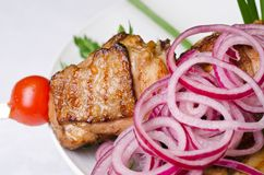 Grilled kebab meat closeup Stock Photo