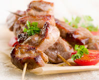 Grilled Kebab served with vegetables . Stock Photos