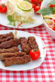 Grilled kebabs - kebab grill Stock Photography