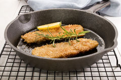 Grilled kipper with oat bran in a cast iron pan. Grilled scottish kipper with oat bran, slice lemon, rosemary in a cast iron pan Royalty Free Stock Image
