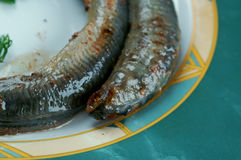 Grilled lamprey Royalty Free Stock Photos