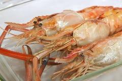 Grilled langoustine prawns Stock Image