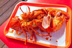 Grilled large lobster in mexican restaurant Royalty Free Stock Images