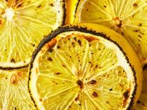 Grilled lemons Stock Photos
