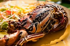 Grilled Lobster On Yellow Plate Stock Photo - Image: 29080072
