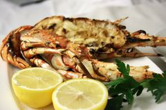 Grilled lobster. Grilled pacific lobster split in shell with garnish royalty free stock photo