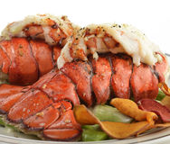 Grilled Lobster Tail  With Asparagus Royalty Free Stock Photo