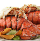 Grilled Lobster Tail  With Asparagus Royalty Free Stock Photos