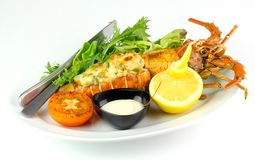 Grilled Lobster Thermidor. Accompanied with lemon,salad,grilled tomato and cheese cream on white plate Stock Photography