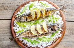 Grilled mackerel with basmati rice and fresh arugula. On the board stock images