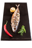 Grilled mackerel on a black plate Royalty Free Stock Image