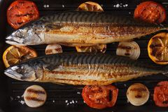 Grilled mackerel fish on the grill closeup horizontal top view Royalty Free Stock Photography