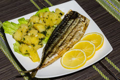 Grilled mackerel Stock Photos