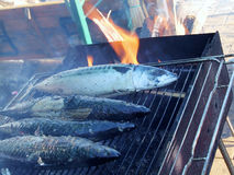Grilled Mackerel. Mackerel grilling on an outdoor charcoal grill Stock Photo