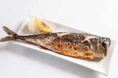 Grilled Mackerel Stock Images