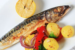 Grilled mackerel and potatoes Stock Image