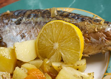 Grilled mackerel and potatoes Royalty Free Stock Photos